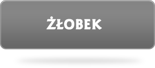 Żłobek Białystok, Skorupy